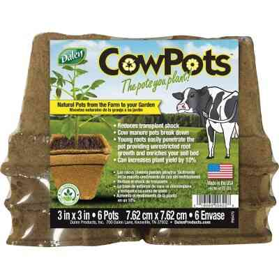 Dalen CowPots 3 In. W. x 3 In. L. Square Cow Manure Grow Pot (6-Pack)